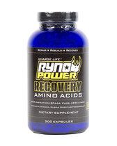 Ryno Power Recovery